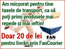 fan_fv